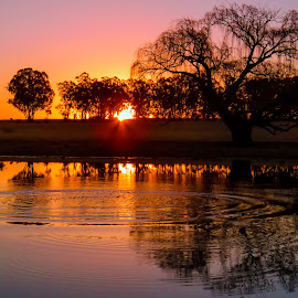 Rippling Peace by Thys Du Plessis - Landscapes Sunsets & Sunrises
