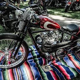 by Adam Johnson - Transportation Motorcycles