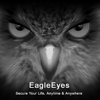EagleEyes(Lite) For PC