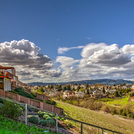 Mountain Hawk after a Rainstorm by Jeanine Akers - City,  Street & Park  Neighborhoods ( clouds, nikon d5100, hdr, santa rosa, mountain hawk, heighborhoods )
