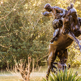Horse and Rider by Kevin Smith - City,  Street & Park  City Parks ( austin texas capitol )