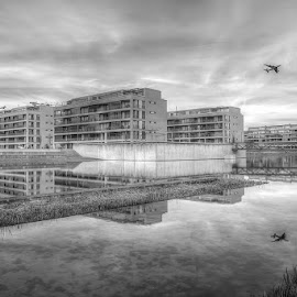 by Piotr Margiel - Buildings & Architecture Other Exteriors ( reflection, houses, zurich, airplane, apartments )