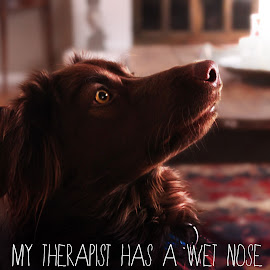 My therapist... by Dave Bernard - Typography Words (  )
