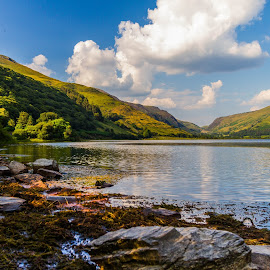 Talyllyn Summer Love by Clare Richardson - Landscapes Mountains & Hills ( hills, picturesque, mountains, talyllyn, wales, lake, scenery, landscape )