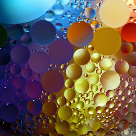 Floating Colors by Janet Herman - Abstract Macro ( water, abstract, macro, colors, ellipses, floating, reflections, orbs, spheres, oil )