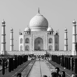 Taj by Keyur Suthar - Landscapes Travel