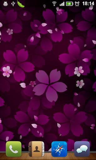樱花飘零动态壁纸