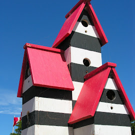 BirdHouse by David Gilchrist - Artistic Objects Other Objects ( structure, birdhouse, artistic objects, pei, birds )