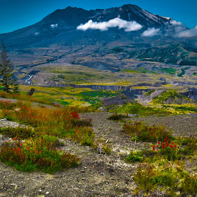 by Christopher Barker - Landscapes Mountains & Hills ( award, mt st helens )