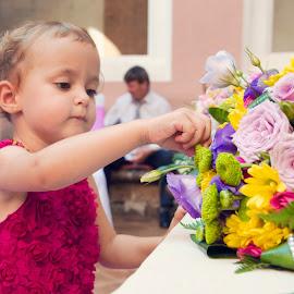 Little princess by Szalai Katalin - Wedding Other ( bouquet, colors, wedding, summer, flowers, szalaikatee,  )