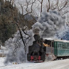 Iron Horse II by Pascal Hubert - Transportation Trains ( winter, cold, steam train, snow, romania, smoke )