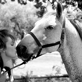 My Love for my Horse by Adèl Roothman - Animals Horses ( love, woman, pets, horse, animal,  )