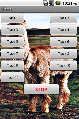 라마의 alpacas 사운드 효과