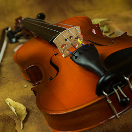 Soul of music by Rakesh Syal - Artistic Objects Musical Instruments