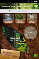 Screenshot of Bois Forêt