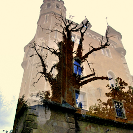 old oak tree and castle by Dragutin Vrbanec - Digital Art Abstract ( tower, old, oak, croatia, castle )