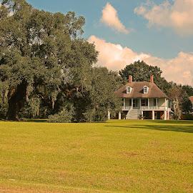 Louisiana Antibellum Home by Ron Olivier - Buildings & Architecture Homes ( louisiana antibellum home )
