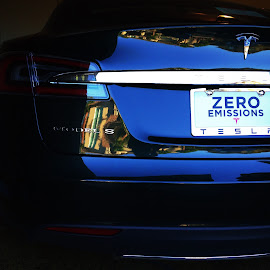 Tesla by Deborah Arin - Transportation Automobiles ( zero emissions, environment, cars, electric, tesla, gree )
