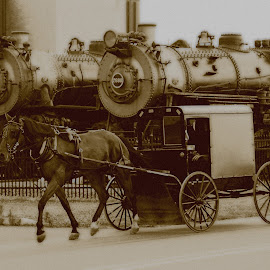 Horsepower by Gene Myers - Transportation Other ( amish, sepia, buggy, horse, pennsylvania, steam locomotives, museum, trains, gene myers,  )