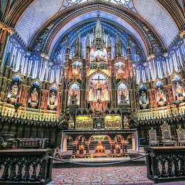 Cathedral art by Roland Bast - Buildings & Architecture Places of Worship ( montreal, church, canada, line, cathedral )