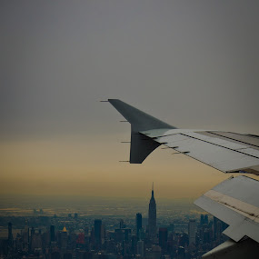 The Big Apple by Pope  Africanas - City,  Street & Park  Skylines ( airplane, nyc, arial )