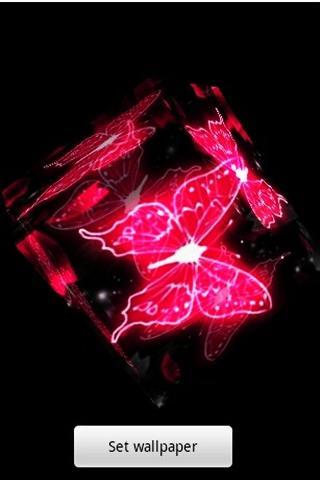3 차원 Butterfly6