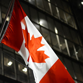 Canadian Flag by Christopher Carter - Buildings & Architecture Other Exteriors ( building, flag, canada, night, canadian flag )