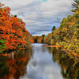 by Susan Hogan - Landscapes Waterscapes ( fall, color, colorful, nature )