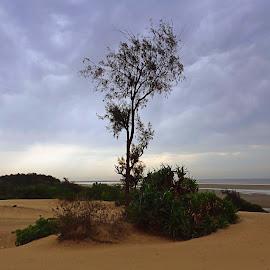 by Debashish Chakraborty - Novices Only Landscapes