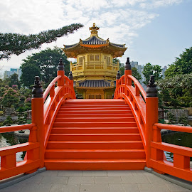 Golden Pagoda & Red Bridge by Jason Lovell - Buildings & Architecture Places of Worship ( red, lucky, asia, wealth, gold, china )