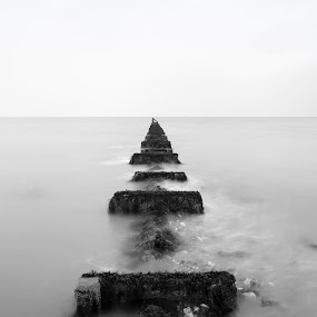 Sea Lane Groyne by Darren Curtis - Landscapes Beaches ( cityscapes, copyright-2014 all rights reserved, landscapes of sussex, seascapes, info@darrencurtisphotography.co.uk, living landscapes, 2014-03 sea lane groyne, landscapes, fine art photography., sussex landscapes, street photography )