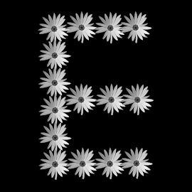 The English Alphabet E by Dipali S - Typography Single Letters ( f, abstract, creation, orange, font, illustration, wallpaper, daisy, print, pattern, artistic, alphabet, typography, english, flower, design )