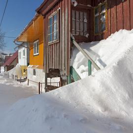 Heavy snow by Stanislav Horacek - Landscapes Weather