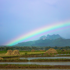rainbow by Febri Budi Setiawan - Landscapes Weather