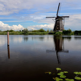 Kinderdike, Netherlands by Andrew Tolsma - Landscapes Waterscapes ( clouds, water, water lilly leaves reflection, windmill )