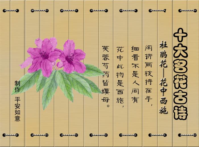 十 大 名 花 古 诗 - 千山枫叶 - 千山枫叶【钢花】的个人主页