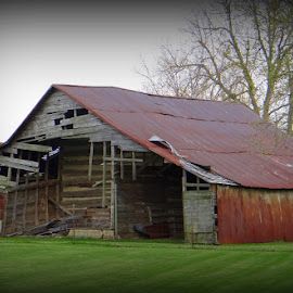 Old Barn by Kimberly Havens-Lott - Buildings & Architecture Decaying & Abandoned ( cabin, building, barn, wch, falling )
