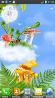 Screenshot of Mushroom HD Live Wallpaper