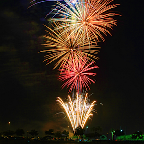 0177-The Rockets Red Glare! by Fred Herring - Public Holidays July 4th (  )