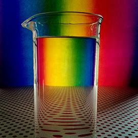 Glass art by Janette Ho - Artistic Objects Glass (  )
