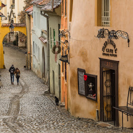 Love Walk by Mihaela Jurca - City,  Street & Park  Street Scenes ( sighisoara, colors, cobblestone street )