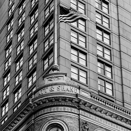 Watt and Shand Building by Troy Snider - Buildings & Architecture Public & Historical ( building, flag, patriotic, american, stone, historical, watt and shand )