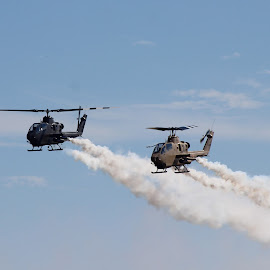 Military Helicopters at Air Show by Amara Dempsey - Transportation Helicopters ( helicopter, novice, aircraft, transportation, entertainment, military, air show, airshow,  )