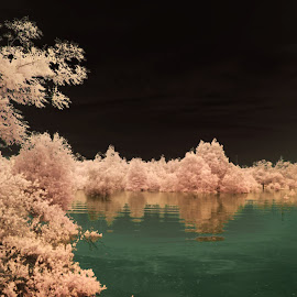 by Muhammad Reza Arhamni - Landscapes Waterscapes