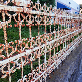 The Rusty Fence by Melanie Goins - Buildings & Architecture Architectural Detail ( fence, street, line, rusty, straight,  )