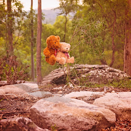 Teddies coming in to land!! by Esther Visser - Artistic Objects Toys