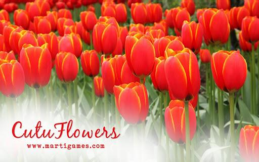 Cutu-Flowers
