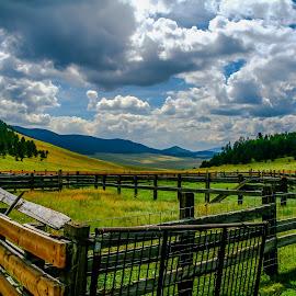 Valle Vidal Carrels by Jeremy Elliott - Landscapes Mountains & Hills (  )