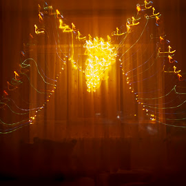 by Dan Daniel - Abstract Light Painting ( lights, trail, christmas, yellow )