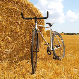 New bike... #bike #bicycle #new #quella #quellabicycle #quellabikes @quellabikes #field #haybales #uk  #edit #gold #jw #berrr #kings #neco #quando by Joseph Stone - Transportation Bicycles